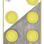 Fünf der Münzen